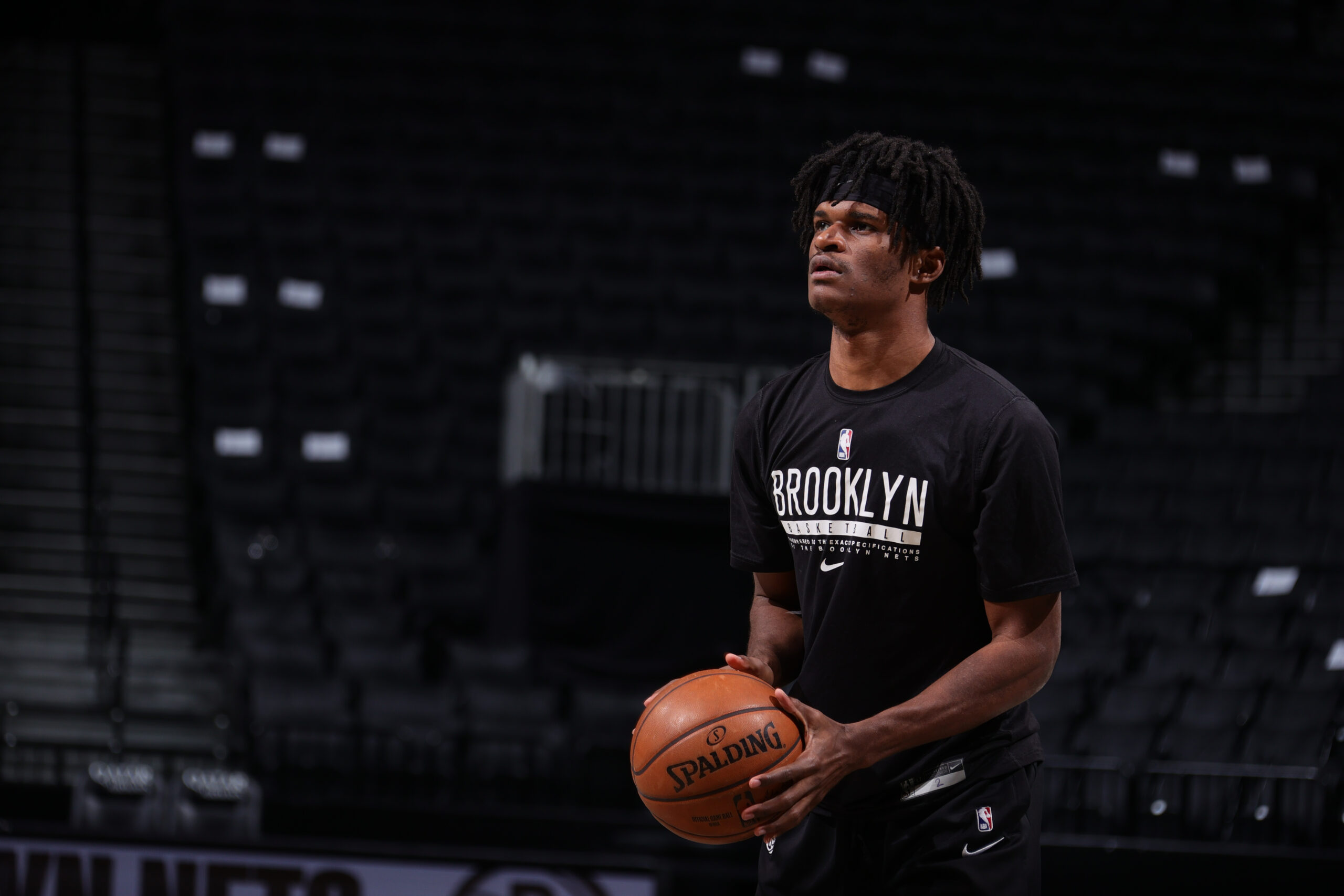 Nets sign Alize Johnson to multi-year contract
